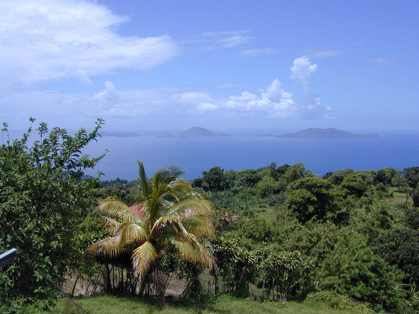 Guadeloupe_h41