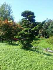 bambouseraie_18_06-39