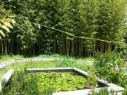 bambouseraie_18_06-75