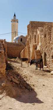 Djerba_2019_03-26