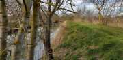 19_01_13_Lunel_Canal-10